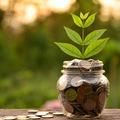 Zelené finančné produkty vo svete prudko rastú, na Slovensku zatiaľ chýbajú