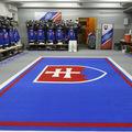 Svetový hokejový šampionát prinesie milióny eur