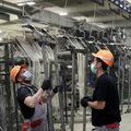 Prieskum CBRE: Každý deň chodí do práce len 26 % Slovákov