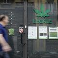 Ekonomika legalizácie marihuany a prečo je dlhodobé investovanie do odvetvia tak náročné