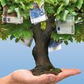 Čarovný strom speniazmi: Na trhu sdlhom nie sú si všetci rovní
