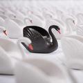 Varovné signály ignorovali, čierna labuť už len ako výhovorka