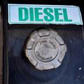 Kravy škodlivejšie než naftové motory: Panika okolo dieselu pomôže lepšie predávať iné veci