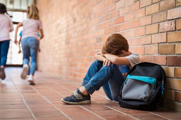 Nerovnosť príjmov spôsobuje šikanovanie na školách