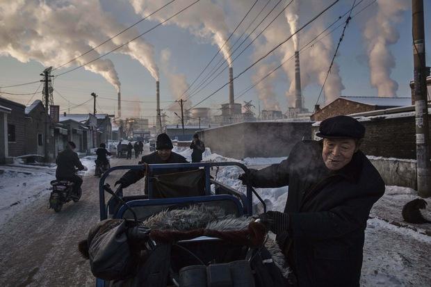 Stromy nevidia: Technologickí miliardári posadnutí klimatickými zmenami